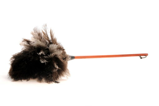 feather duster, ostrich feather, duster